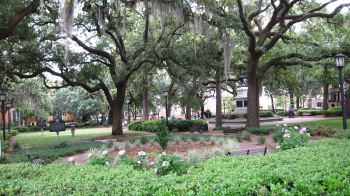 One of the 22 remaining city squares in Savannah, Georgia