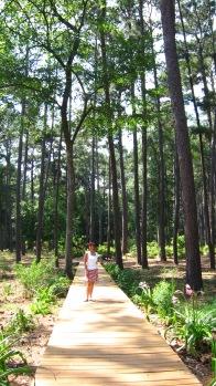 University Arboretum