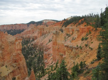 Black Birch Canyon  is one of the many outlooks  in the Bryce Canyon National Park